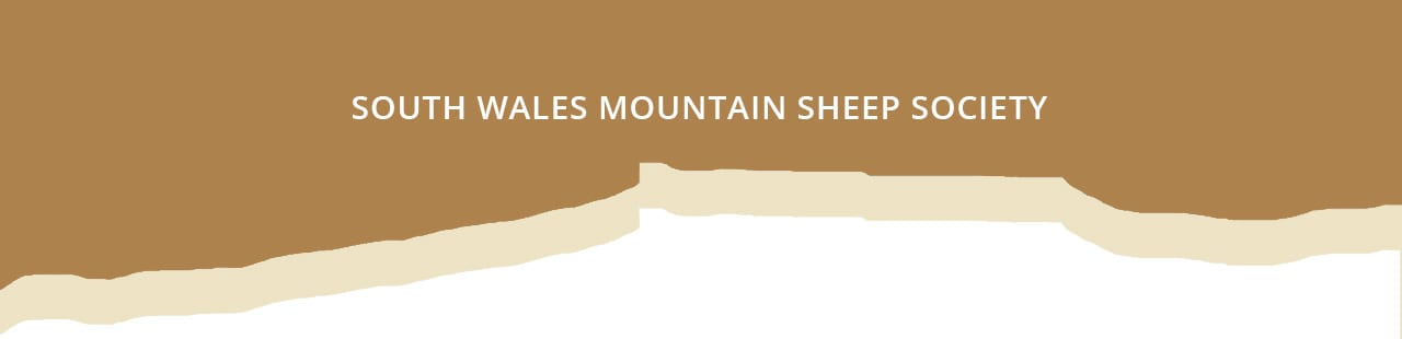 South Wales Mountain Sheep Society